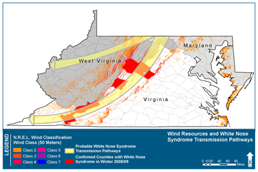 Map of wind resources and whtie nose syndrome pathways